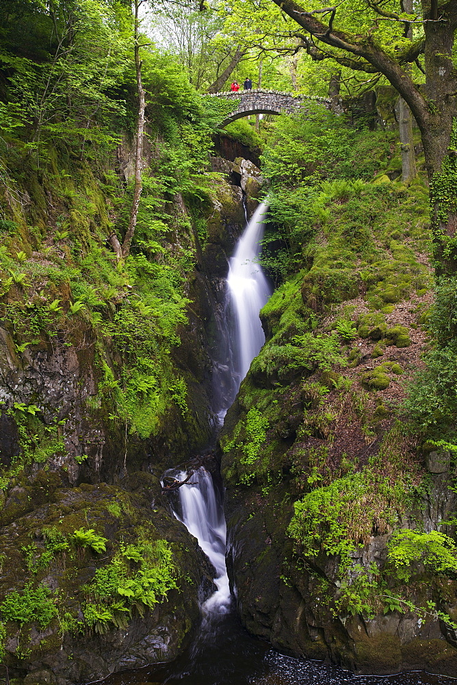 Aira Force, Ullswater, Lake District National Park, Cumbria, England, United Kingdom, Europe - 831-1458