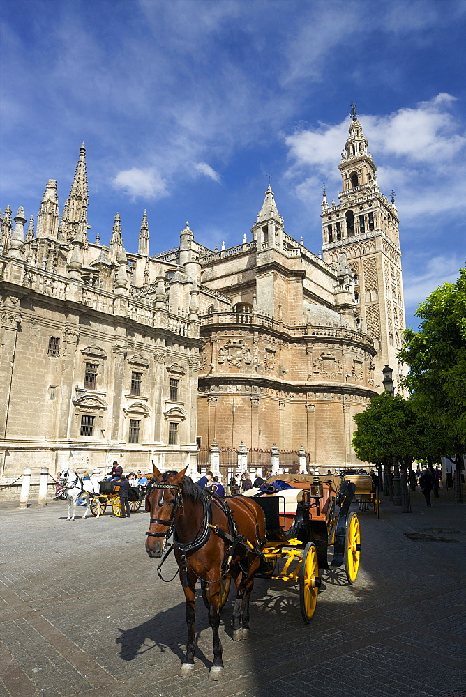 Horse-drawn carriage, Seville Cathedral (Catedral Sevilla), UNESCO World Heritage Site, Andalucia, Spain, Europe - 831-1466