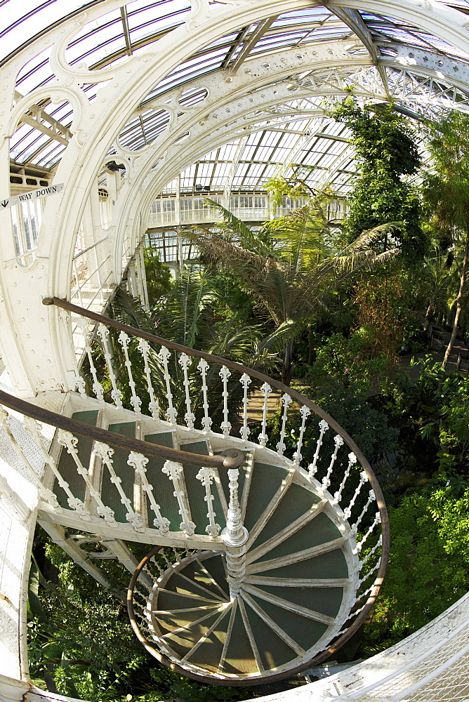 Spiral staircase in the Temperate House, Royal Botanic Gardens, Kew, UNESCO World Heritage Site, London, England, United Kingdom, Europe