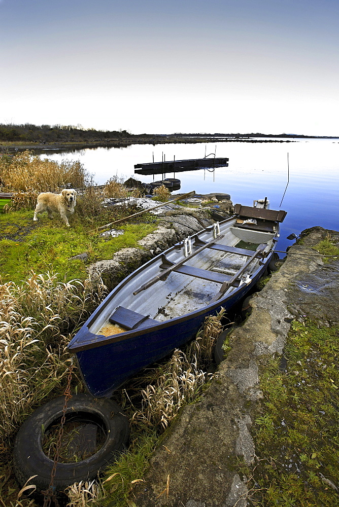 Small dinghy moored at Lough Corrib, Connemara, County Galway, Republic of Ireland, Europe