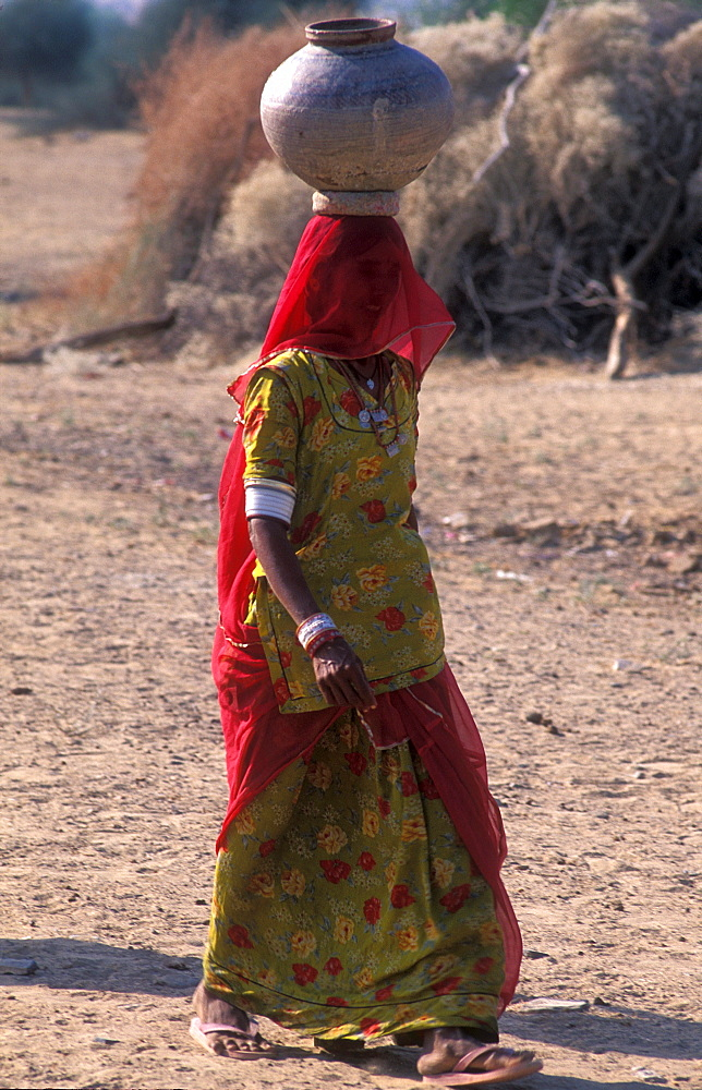 Young woman in sari with water jug, Thar Desert, Rajasthan, India, Asia