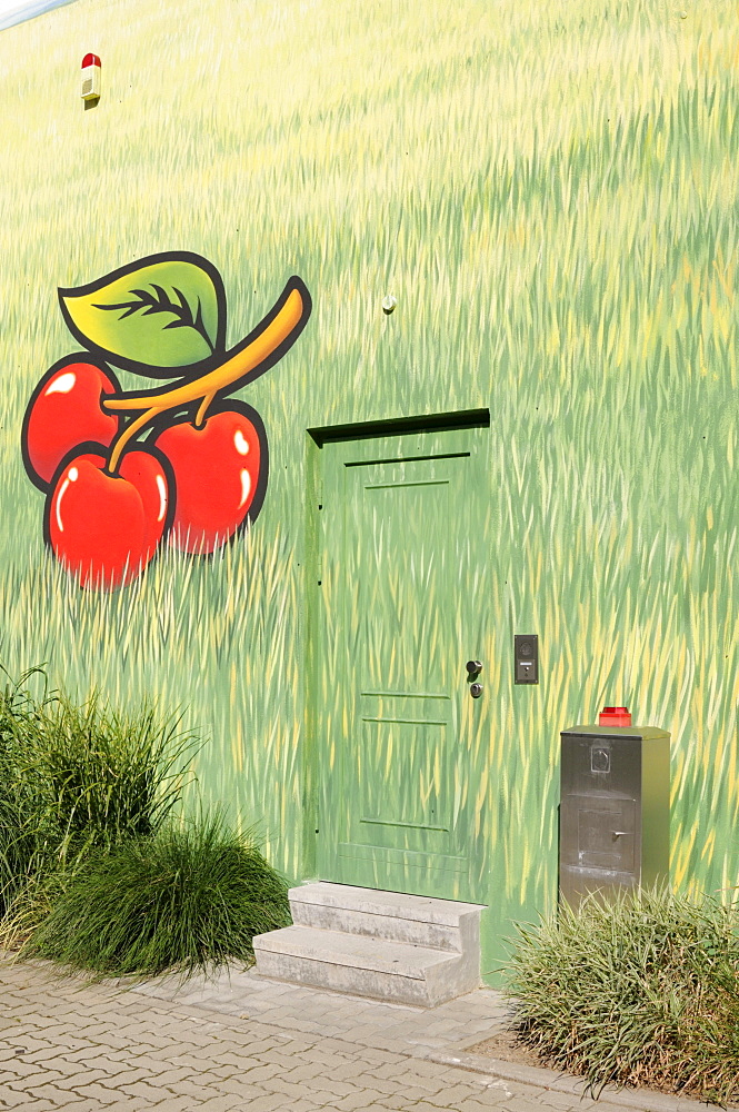 Mural on a house wall, cherries and grass motif