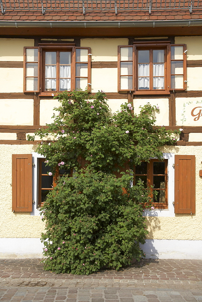Half-timbered, historic guest house opposite the Kloster Buch monastery in Klosterbuch, Saxony, Germany, Europe