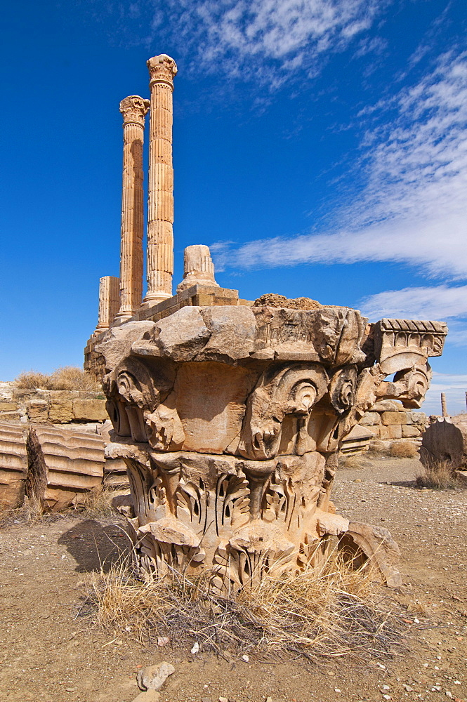 The Roman ruins of Timgad, Unesco World Heritage Site, Algeria, Africa
