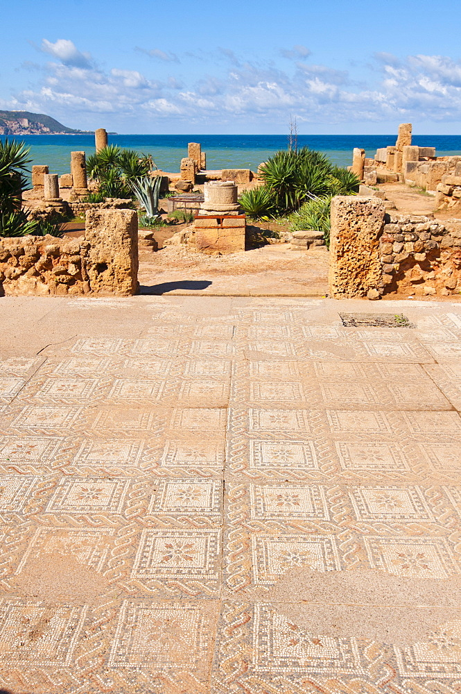 Roman ruins of Tipasa, UNESCO World Heritage Site, Algeria, Africa