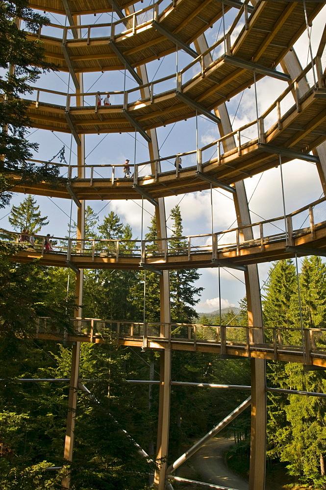 Tree platform, 44 metres high, the world's longest tree top walk, barrier-free spiral form, Neuschoenau, Bavarian Forest National Park, Bavaria, Germany, Europe