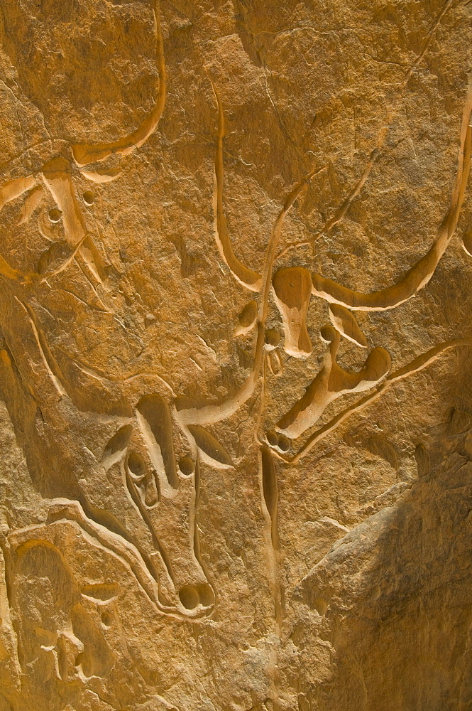 Rock carving, Crying Cow, Algeria, Africa