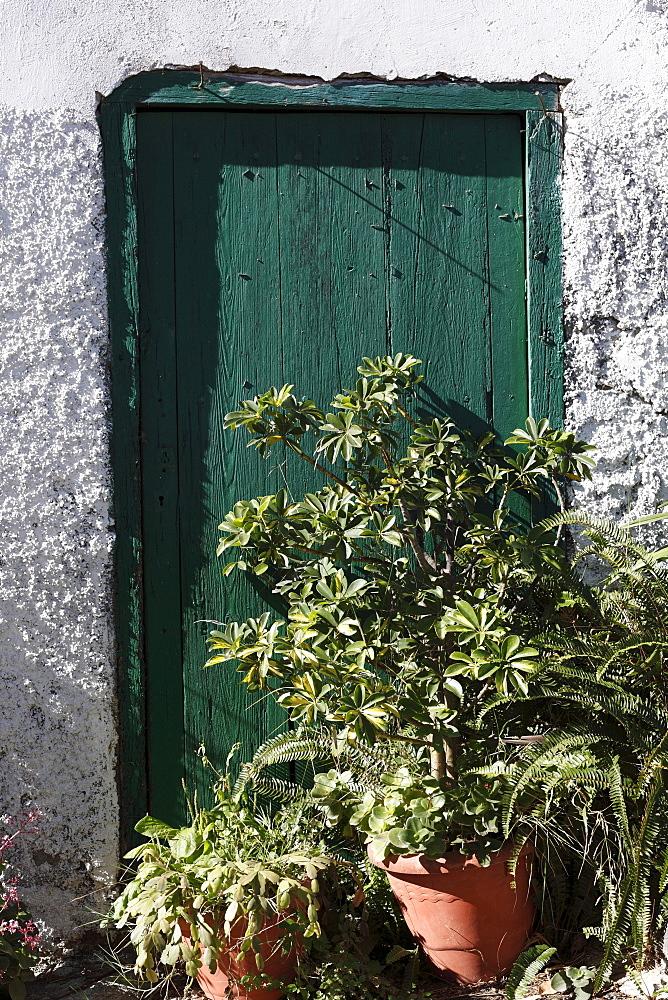 Potted plants outside the door, village of Macayo near Vallehermoso, La Gomera, Canary Islands, Spain, Europe