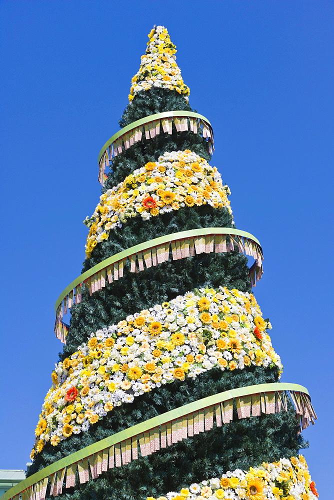 500th jubilee Christmas Tree, Town Hall Square, Ratslaukums, historic district, Vecriga, Riga, Latvia, Northern Europe