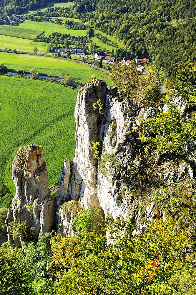 Schaufelsen rocks near Neidingen, the biggest rocky outcrop in the Upper Danube Valley, with 120 metres its one of the highest non-alpine rock climbing sites in Germany, district of Sigmaringen, Baden-Wuerttemberg, Germany, Europe