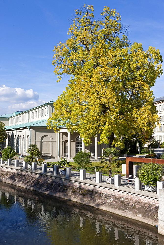 Pump room, black walnut tree, Kurgarten, spa garden, Bad Kissingen, Lower Franconia, Bavaria, Germany, Europe