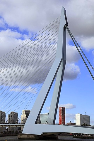 Cable-stayed bridge Erasmusbrug or Erasmus bridge, pylon, Kop van Zuid, Rotterdam, Holland, Netherlands, Europe