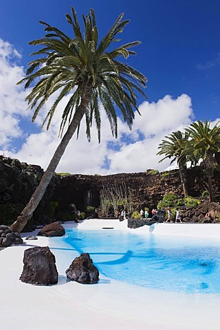 Swimming pool in the lava cave, Jameos del Agua, built by the artist Cesar Manrique, Lanzarote, Canary Islands, Spain, Europe