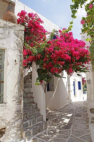 Lefkes mountain village, Paros island, Cyclades, Aegean Sea, Greece, Europe