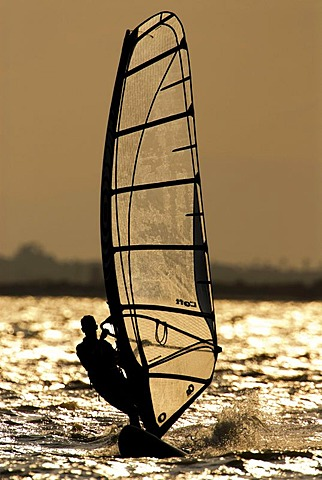 Windsurfer in backlight near the Santa Pola resort, Mediterranean coast, Spain, Europe