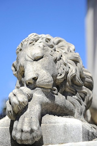 Sleeping lion statue, La Recoleta Cemetery in Buenos Aires, Argentina, South America