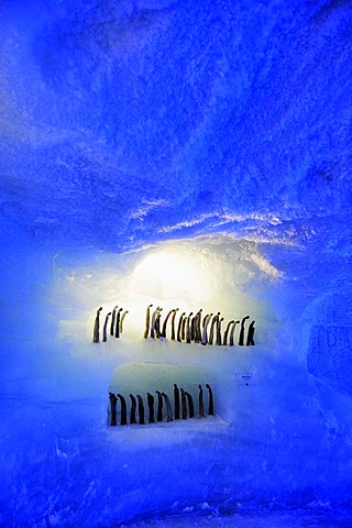 Mt. Mittelallalin, largest glacier cave in the world, Saas Fee, Valais, Switzerland, Europe