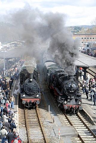 Dampfspektakel 2010 steam train show at Gerolstein station, passenger train engine 2455 Posen, left, and freight train engine 58311, right, Gerolstein, Rhineland-Palatinate, Germany, Europe
