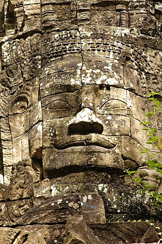 Ta Som, Angkor Wat complex, Siem Reap, Cambodia, Southeast Asia, Asia