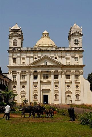 Cathedral, Old Goa, India, Asia