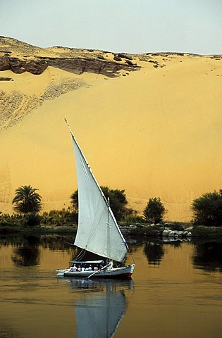 Felucca on the river Nile in front of the Sahara Desert near Aswan, Egypt, North Africa, Africa
