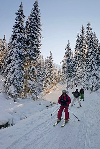 Skiers in the forest, Austria, Europe