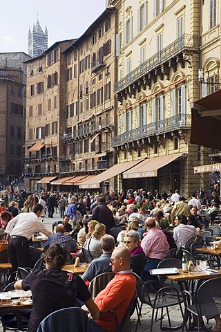 Stree cafe, restaurant, Piazza del Campo, Siena, Tuscany, Italy, Europe