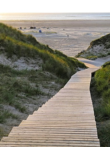 Wooden nature pathway through the sand dunes to the Norddorf beach, island of Amrum, Schleswig-Holstein, Germany, Europe