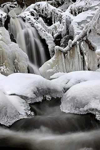 Falkauer Wasserfall waterfall with ice in the Black Forest, Baden-Wuerttemberg, Germany, Europe
