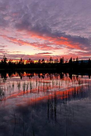 Dusk, Rogen nature reserve, Haerjedalen, Sweden, Scandinavia, Europe
