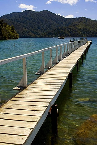 Boardwalk, jetty in a small bay at Queen Charlotte Sound, Marlborough Sounds, South Island, New Zealand