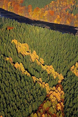 Aerial shot, Heilenbeck Dam, mixed forest, autumn, Ennepetal, Bergisches Land, North Rhine-Westphalia, Germany, Europe