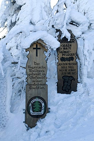 Snowy dead boards on the Grosser Arber, 1456m, Bavarian Forest Nature Park, Bavaria, Germany, Europe