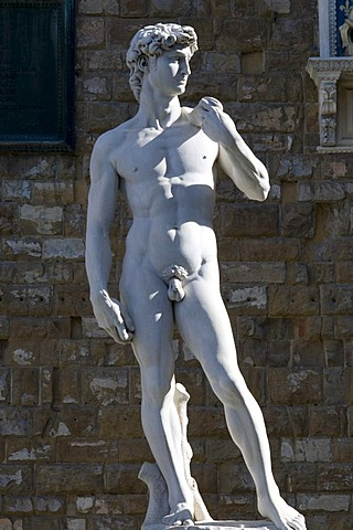 Statue of David by Michelangelo, Palazzo Vecchio, Florence, Tuscany, Italy, Europe