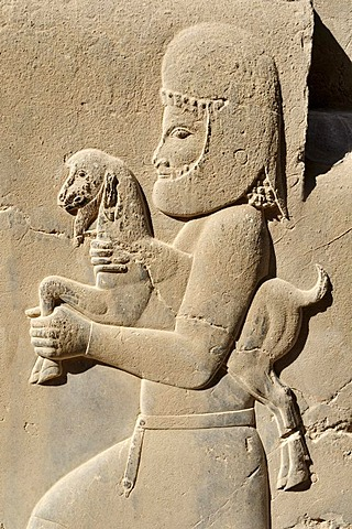 Bas-relief of a Median soldier offering a goat at the Achaemenid archeological site of Persepolis, UNESCO World Heritage Site, Persia, Iran, Asia