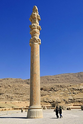 Huge column at the Achaemenid archeological site of Persepolis, UNESCO World Heritage Site, Persia, Iran, Asia