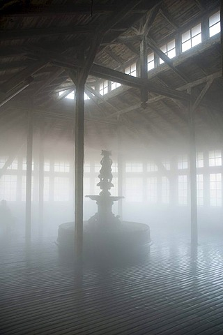 Steam, fog, interior salina, Bad Salzungen, Thuringia, Germany, Europe