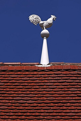 White weather-cock on a roof against a blue sky, Colmar, Alsace, France, Europe