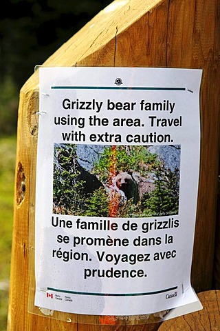 Notice about grizzly bears, Revelstoke National Park, British Columbia, Canada