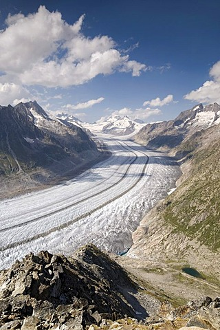 Aletsch Glacier in front of Jungfrau, Moench, Eiger and Gross Wannenhorn Mountains, Bernese Alps, Valais, Switzerland, Europe
