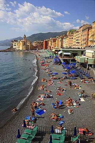 Camogli in the Genoa province, on the Golfo Paradiso at the Riviera di Levante, beach promenade and church Santa Maria Assunta, Liguria, Italy, Europe