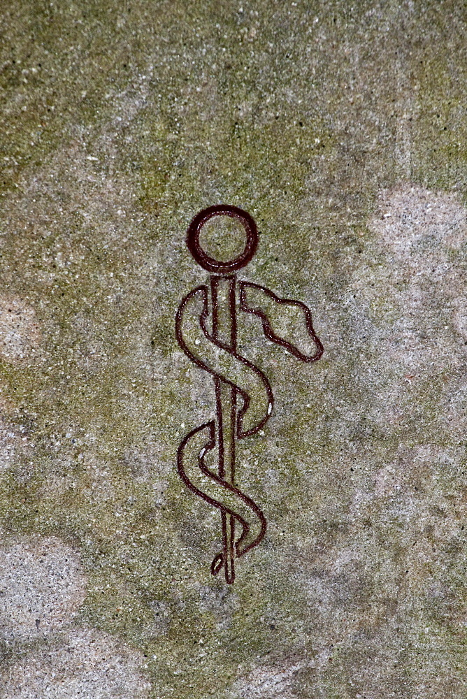Aesculapian staff, rod of Asclepius carved into a wall, symbol of the medical and pharmaceutical professions