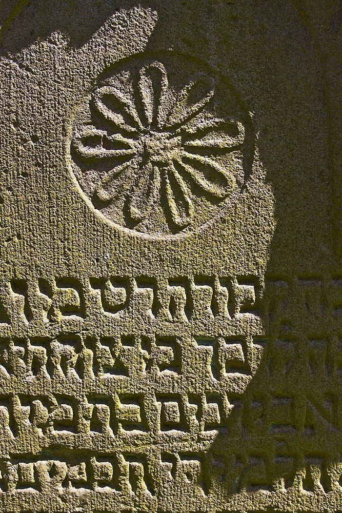 Rosette on a gravestone in the Jewish cemetery in Bonn Schwarz-Rheindorf, North Rhine-Westphalia, Germany, Europe
