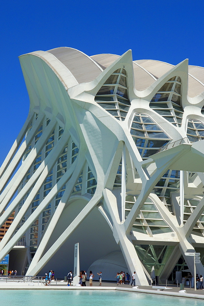 Principe Felipe Museum of Sciences, City of Arts and Sciences by S. Calatrava, Valencia, Comunidad Valenciana, Spain, Europe