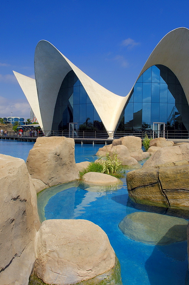 L'Oceanografic aquarium, City of Arts and Sciences by S. Calatrava, Valencia, Comunidad Valenciana, Spain, Europe