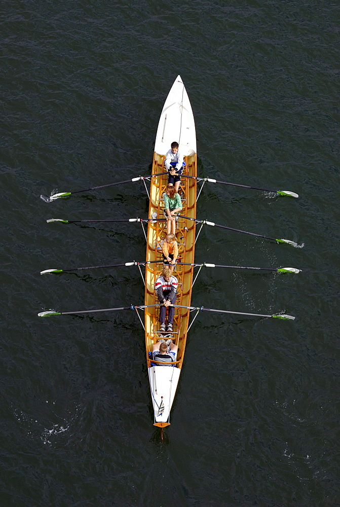 Water sports, double-coxed fours, young rowers in action