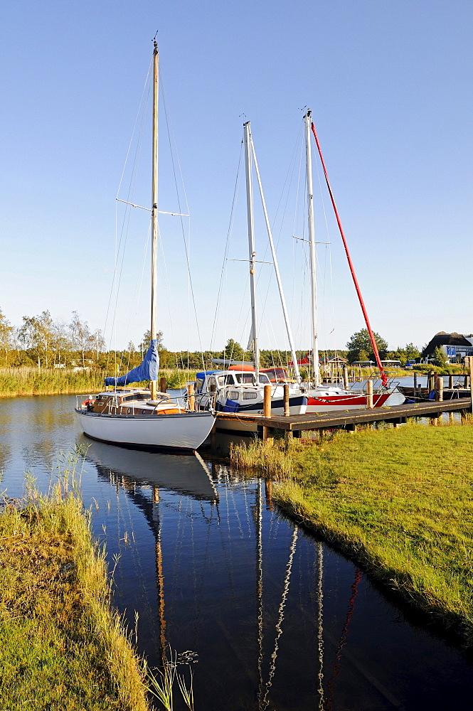 Yachts, sailboats on the landing stage in Moritzdorf, Ruegen Island, Mecklenburg-Western Pomerania, Germany, Europe
