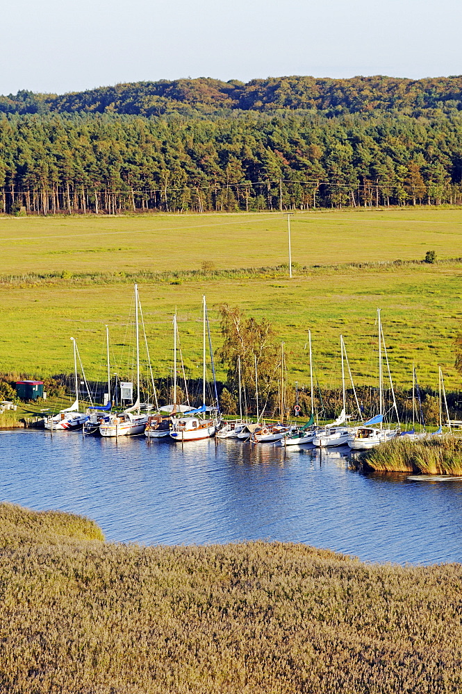 Harbour in the seaside resort of Baabe, Ruegen Island, Mecklenburg-Western Pomerania, Germany, Europe