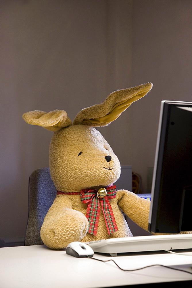 Felix, a toy rabbit, seated at a desk