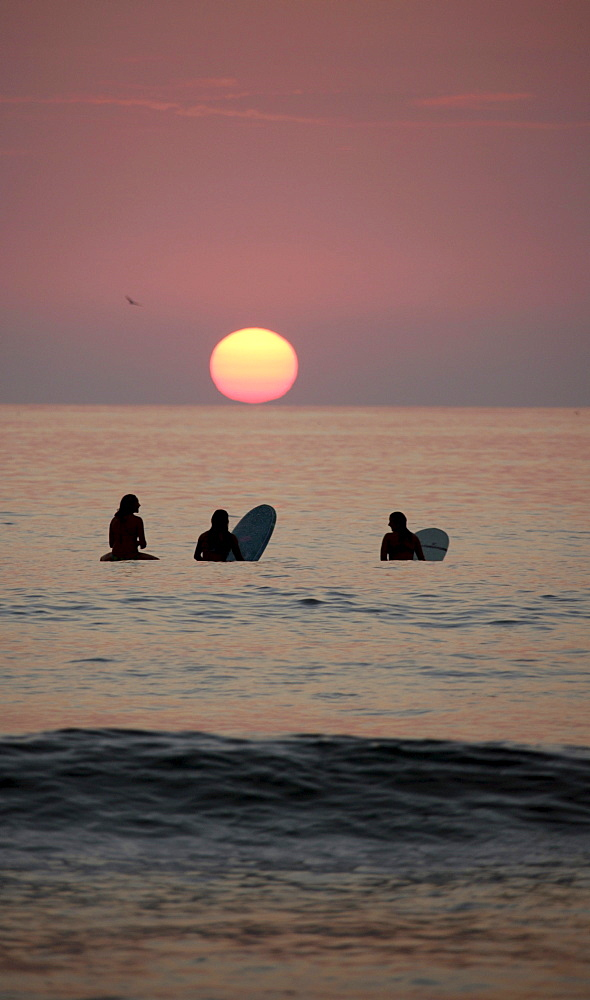 Evening mood, surfers in front of sunset, La Jolla Shores Beach, California, USA, North America